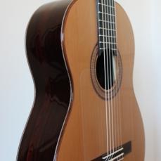 Guitarra de Palosanto de India
